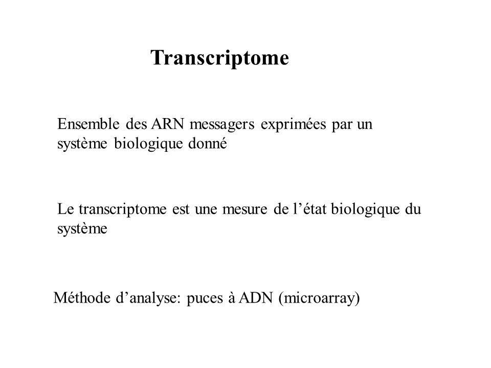 Transcriptome Ensemble des ARN messagers exprimées par un système biologique donné. Le transcriptome est une mesure de l'état biologique du système.