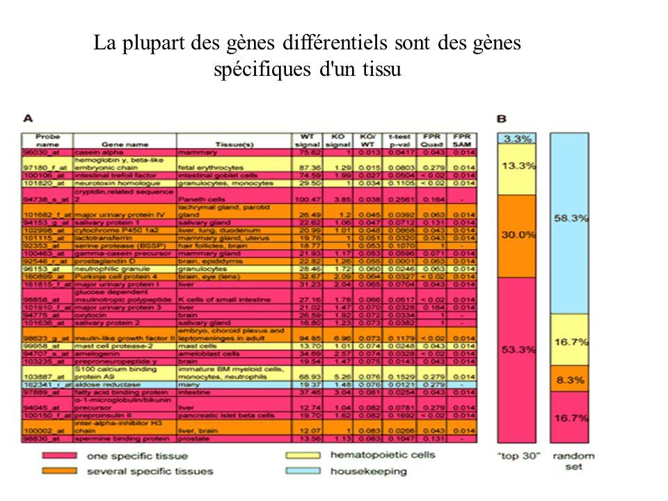 La plupart des gènes différentiels sont des gènes spécifiques d un tissu