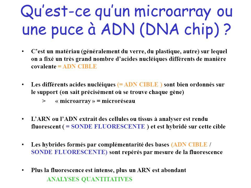 Qu'est-ce qu'un microarray ou une puce à ADN (DNA chip)
