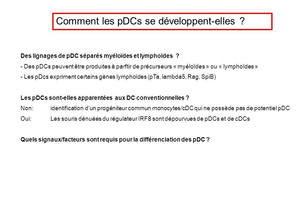 Comment les pDCs se développent-elles
