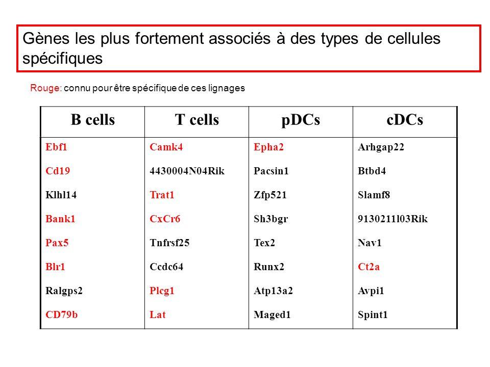 B cells T cells pDCs cDCs