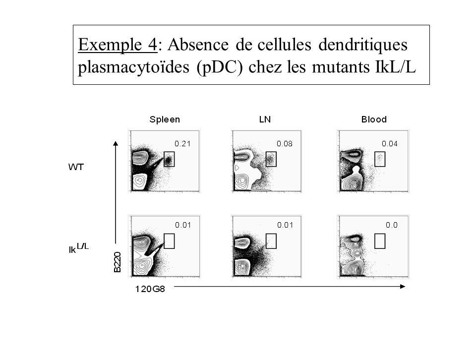 Exemple 4: Absence de cellules dendritiques plasmacytoïdes (pDC) chez les mutants IkL/L