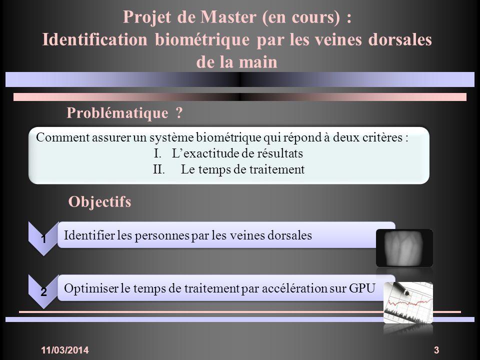 Projet de Master (en cours) :
