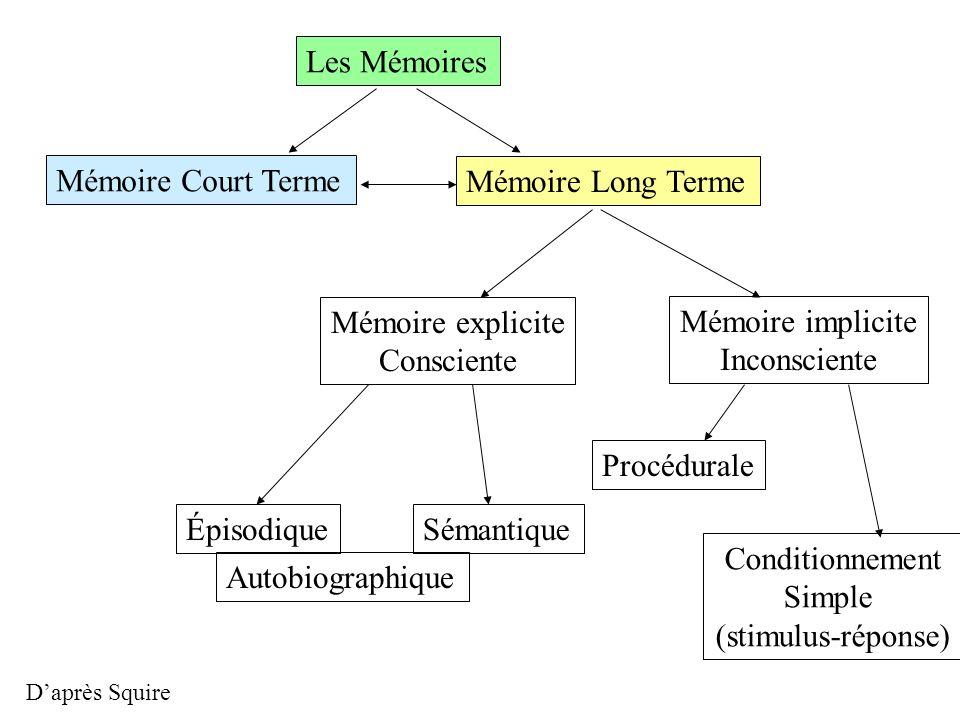 Les Mémoires Mémoire Court Terme Mémoire Long Terme Mémoire explicite