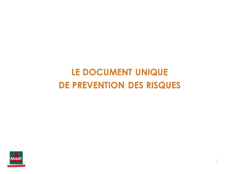 LE DOCUMENT UNIQUE DE PREVENTION DES RISQUES