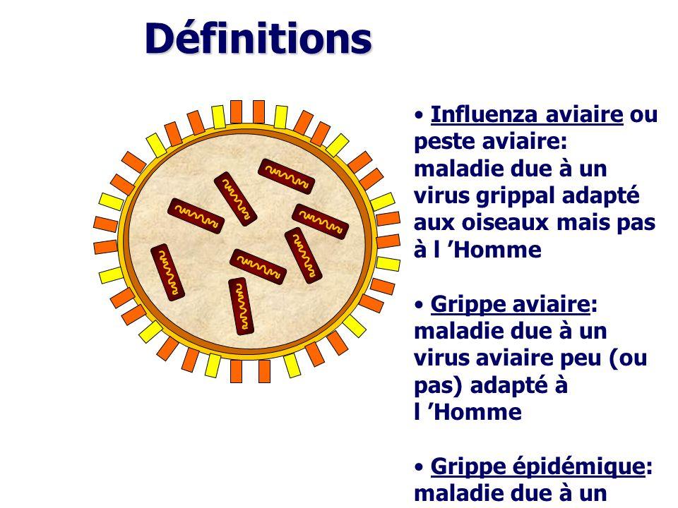 Définitions Influenza aviaire ou peste aviaire: maladie due à un virus grippal adapté aux oiseaux mais pas à l 'Homme.