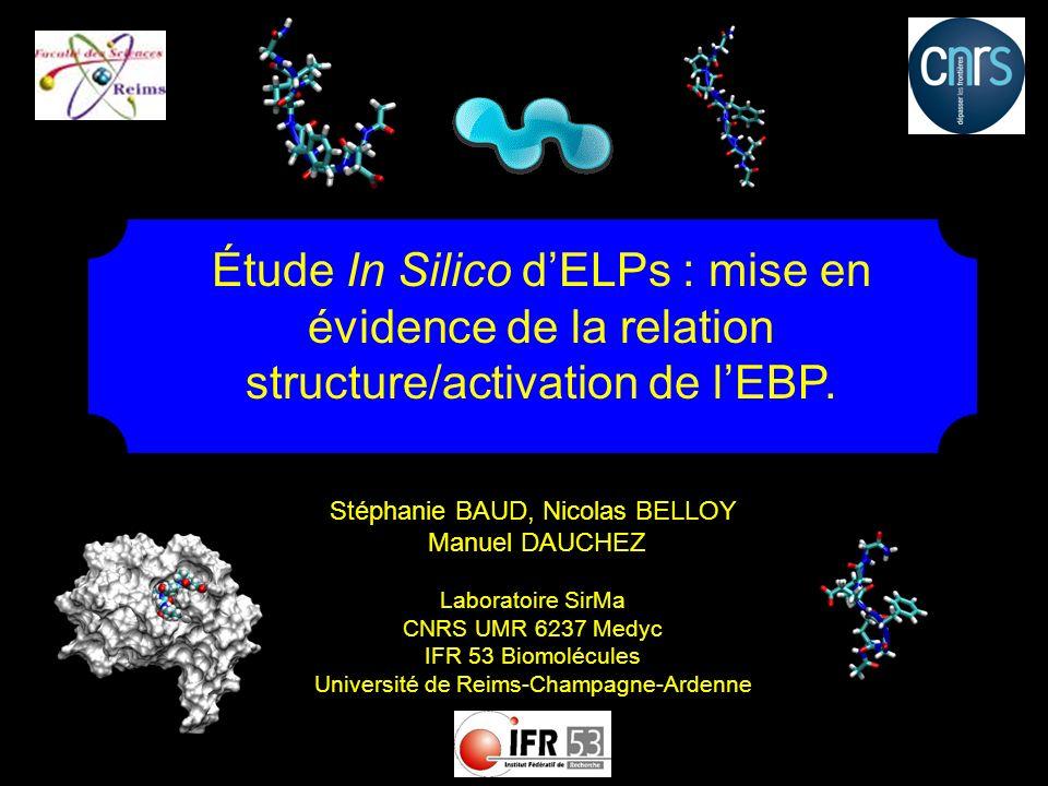 Étude In Silico d'ELPs : mise en évidence de la relation structure/activation de l'EBP.