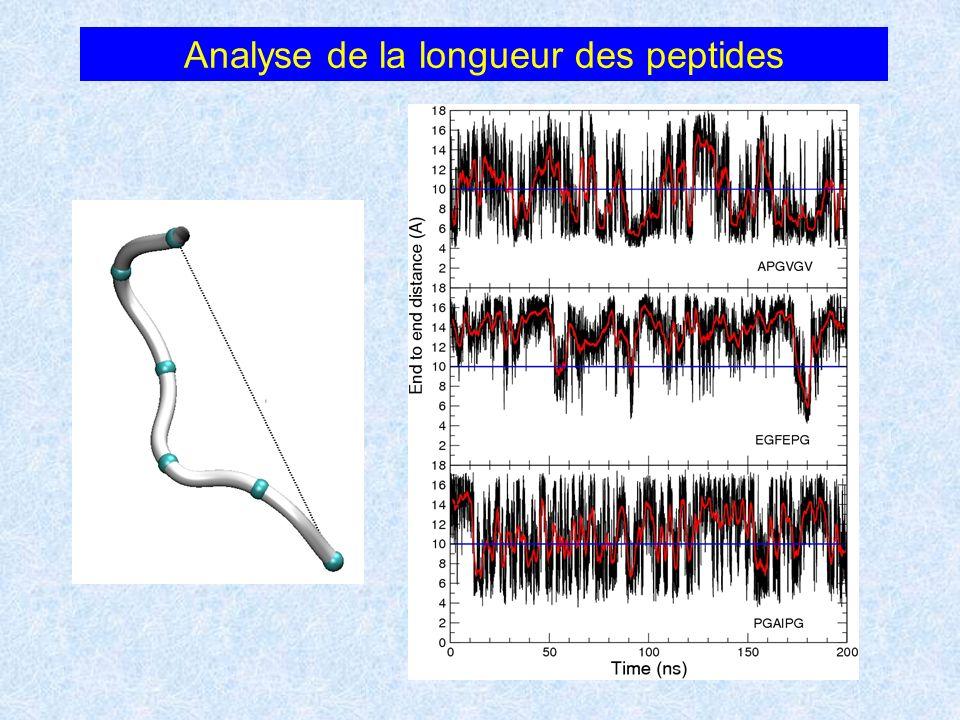 Analyse de la longueur des peptides