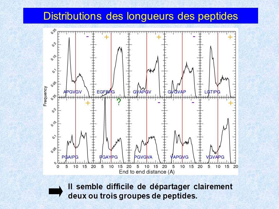 Distributions des longueurs des peptides