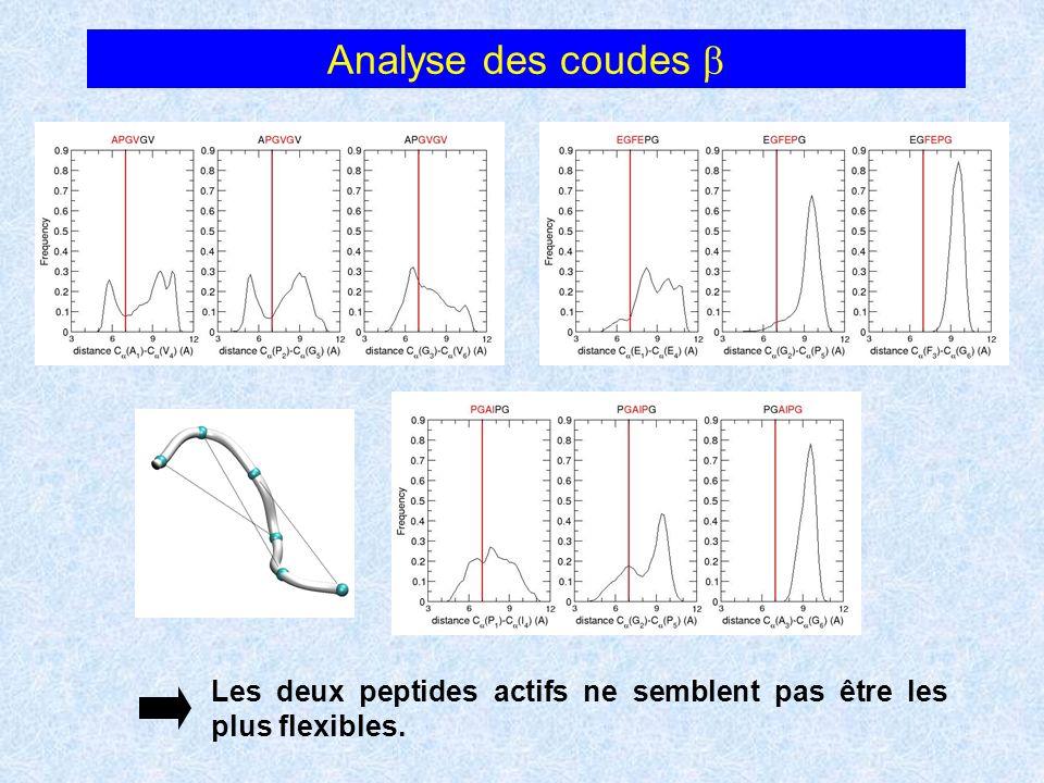 Analyse des coudes b Les deux peptides actifs ne semblent pas être les plus flexibles.