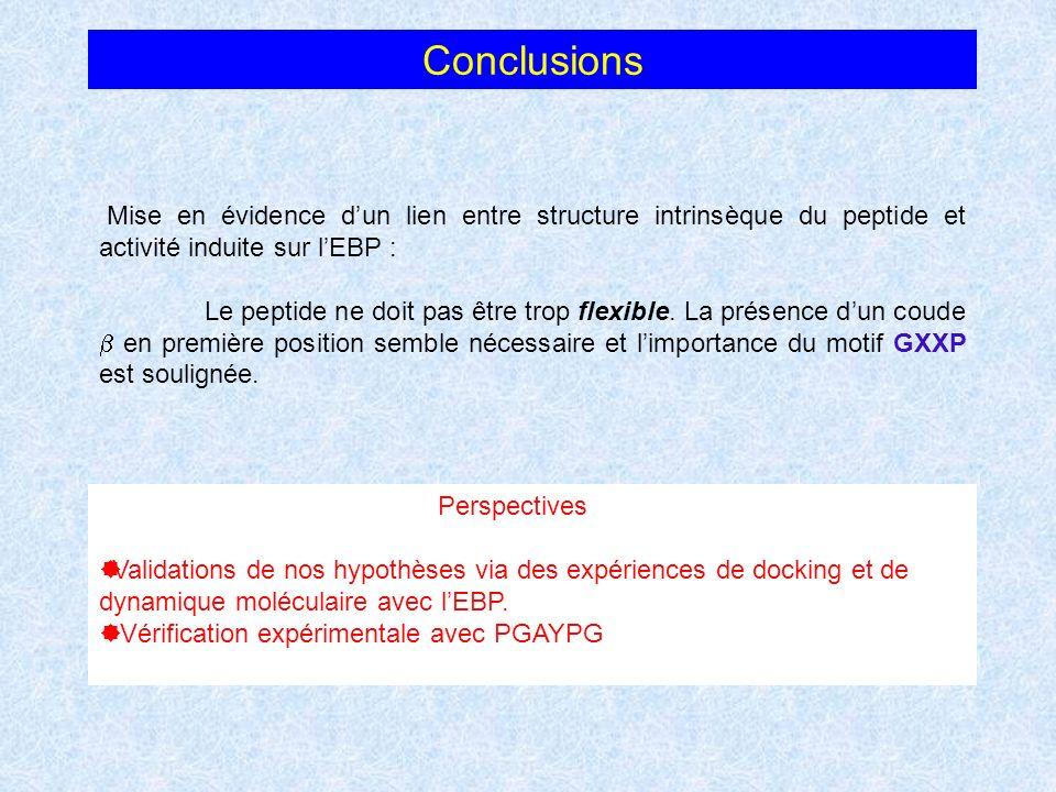 Conclusions Mise en évidence d'un lien entre structure intrinsèque du peptide et activité induite sur l'EBP :