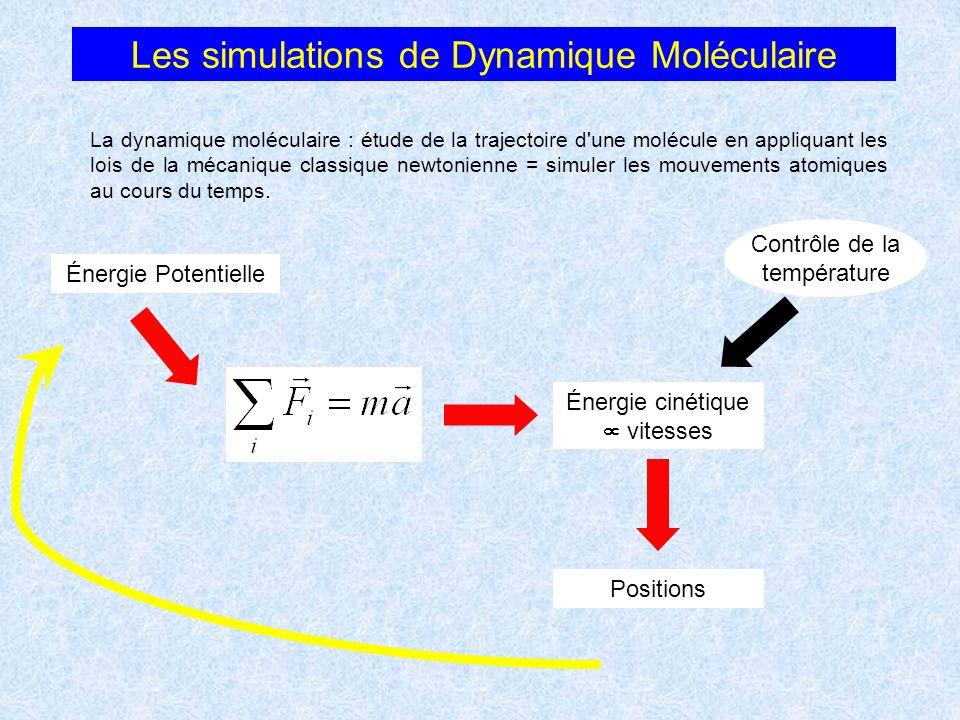 Les simulations de Dynamique Moléculaire