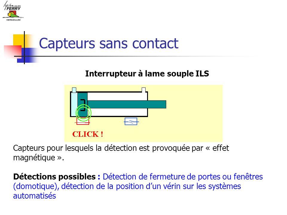 Interrupteur à lame souple ILS