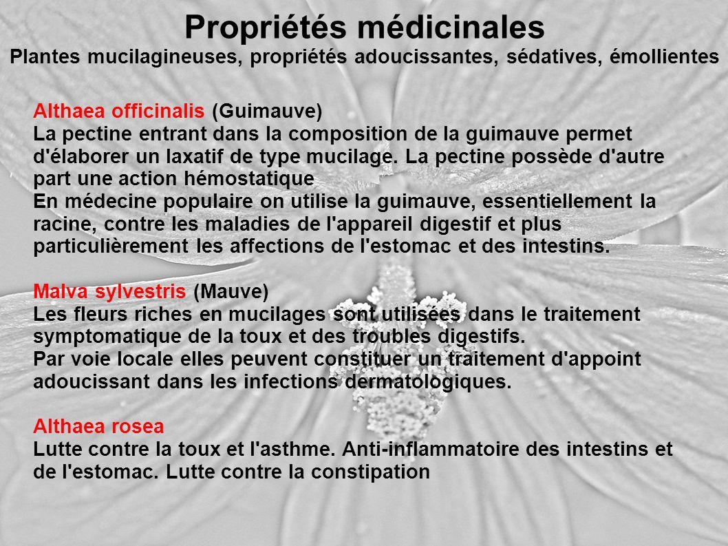 Propriétés médicinales