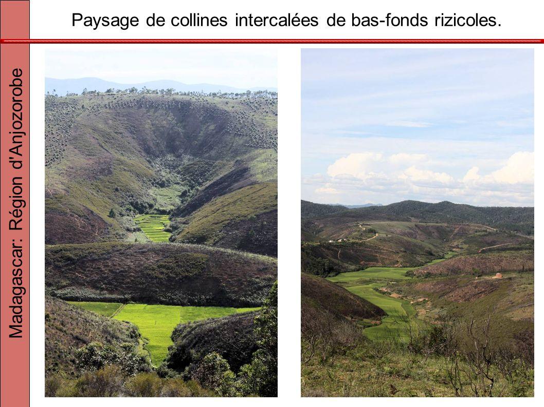 Paysage de collines intercalées de bas-fonds rizicoles.