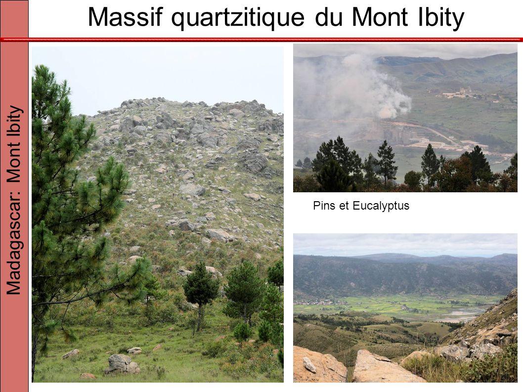Massif quartzitique du Mont Ibity