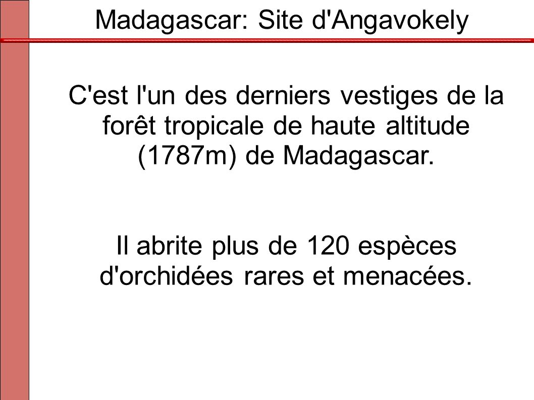 Madagascar: Site d Angavokely