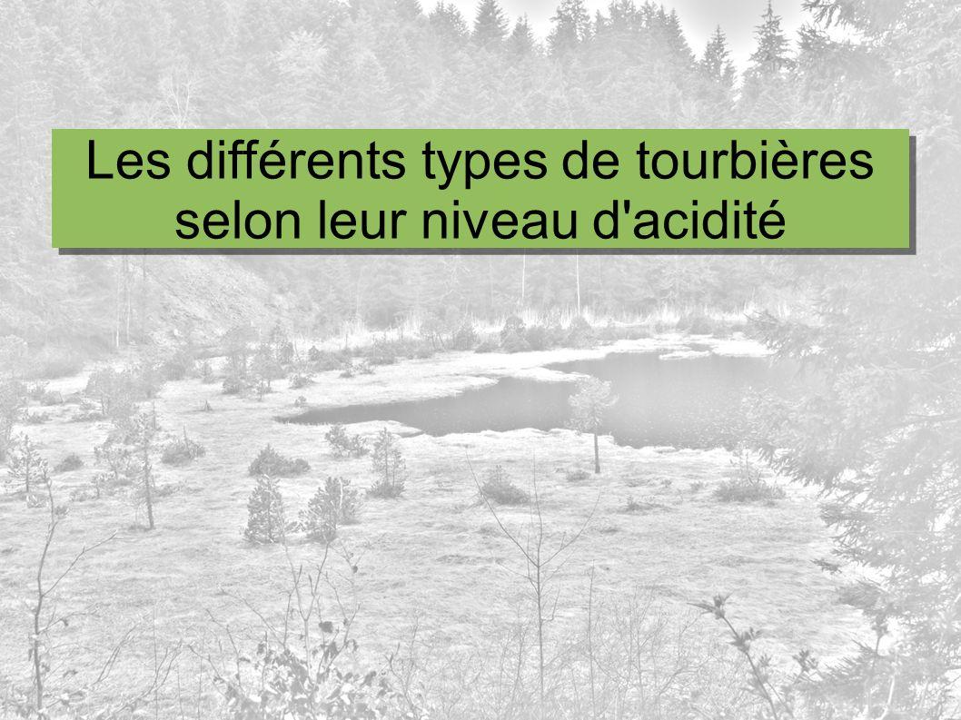 Les différents types de tourbières selon leur niveau d acidité