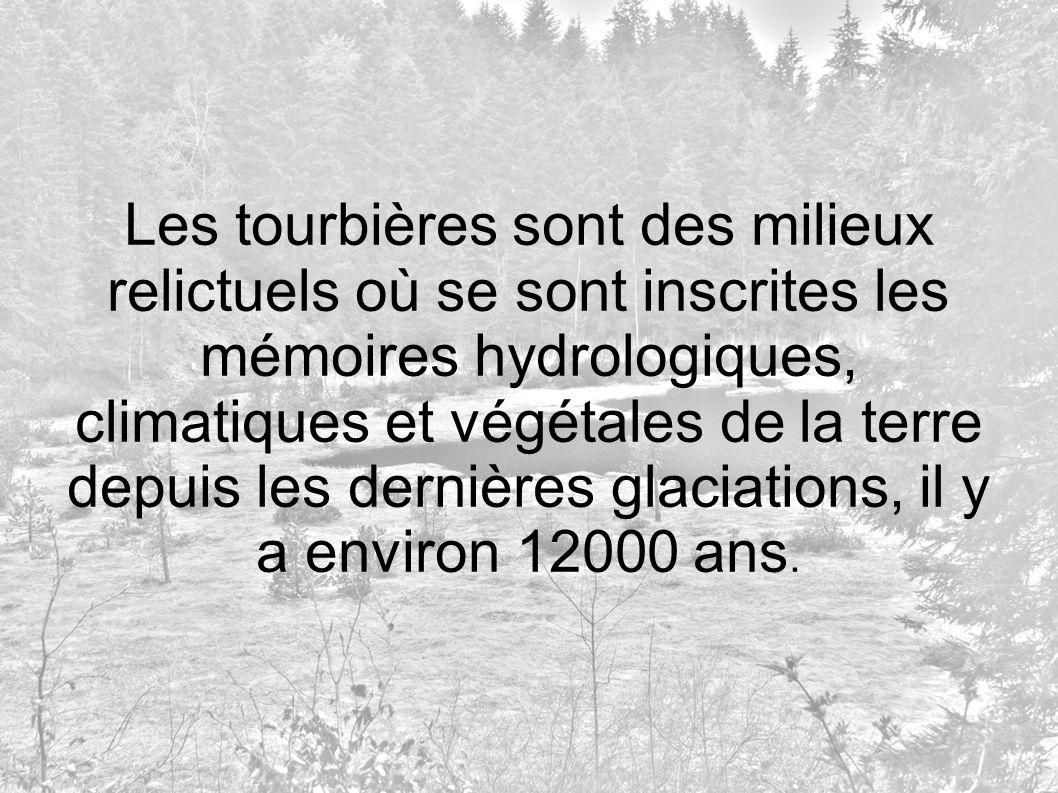 Les tourbières sont des milieux relictuels où se sont inscrites les mémoires hydrologiques, climatiques et végétales de la terre depuis les dernières glaciations, il y a environ 12000 ans.