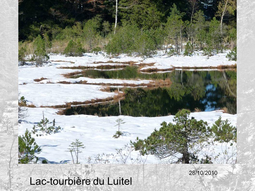 Lac-tourbière du Luitel