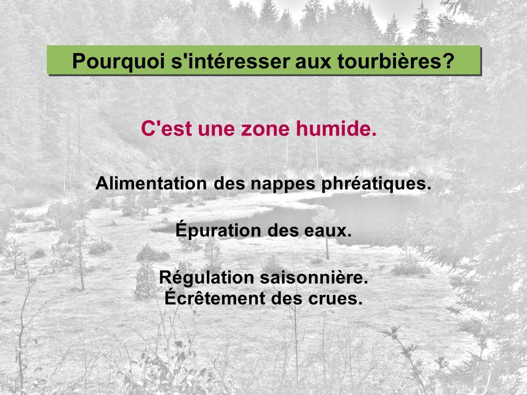 Pourquoi s intéresser aux tourbières C est une zone humide.
