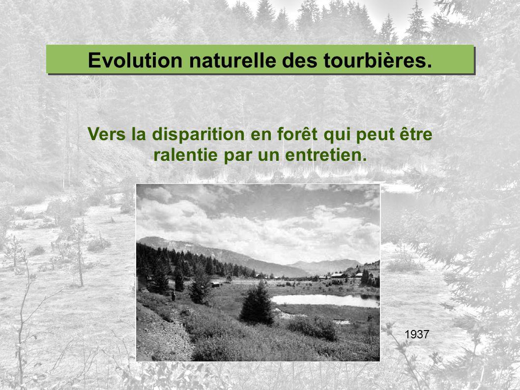 Evolution naturelle des tourbières.