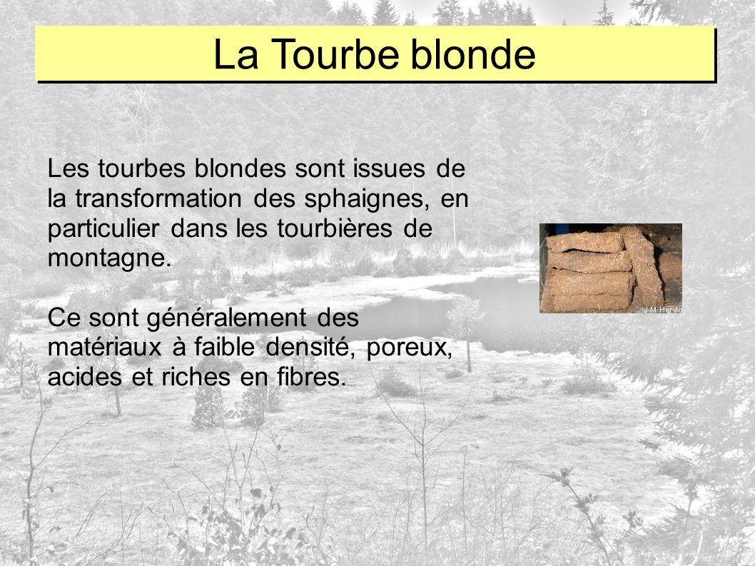 La Tourbe blonde Les tourbes blondes sont issues de la transformation des sphaignes, en particulier dans les tourbières de montagne.