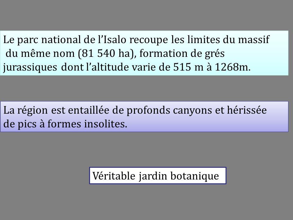 Le parc national de l'Isalo recoupe les limites du massif