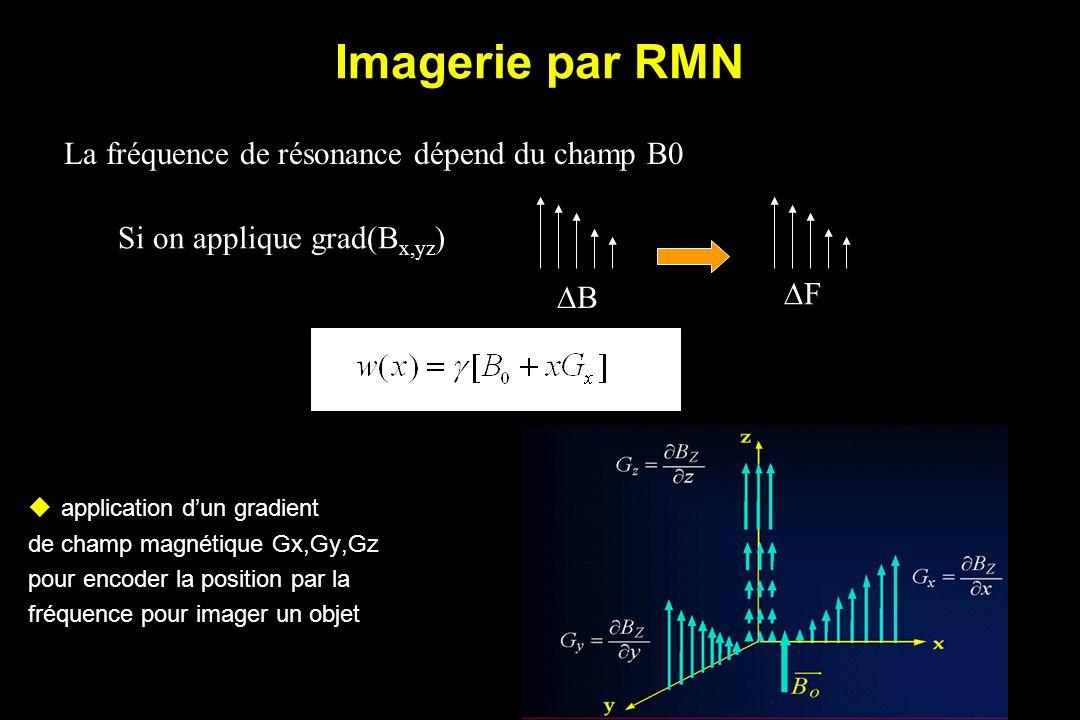 Imagerie par RMN La fréquence de résonance dépend du champ B0