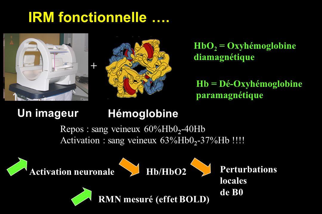 IRM fonctionnelle …. + Un imageur Hémoglobine HbO2 = Oxyhémoglobine