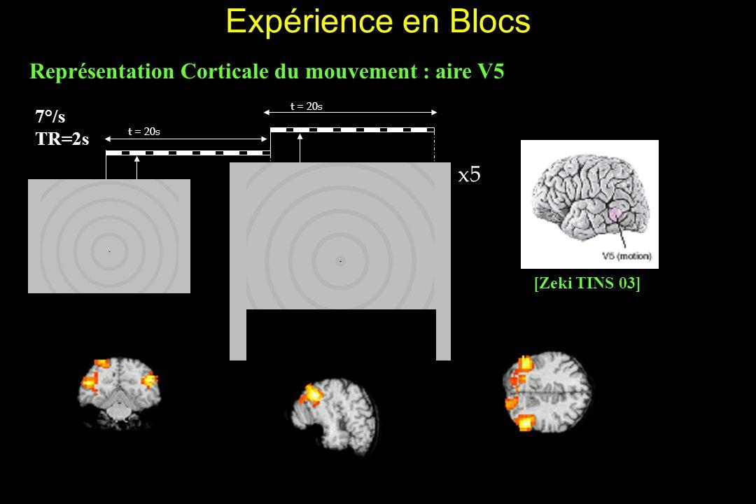 Expérience en Blocs Représentation Corticale du mouvement : aire V5 x5