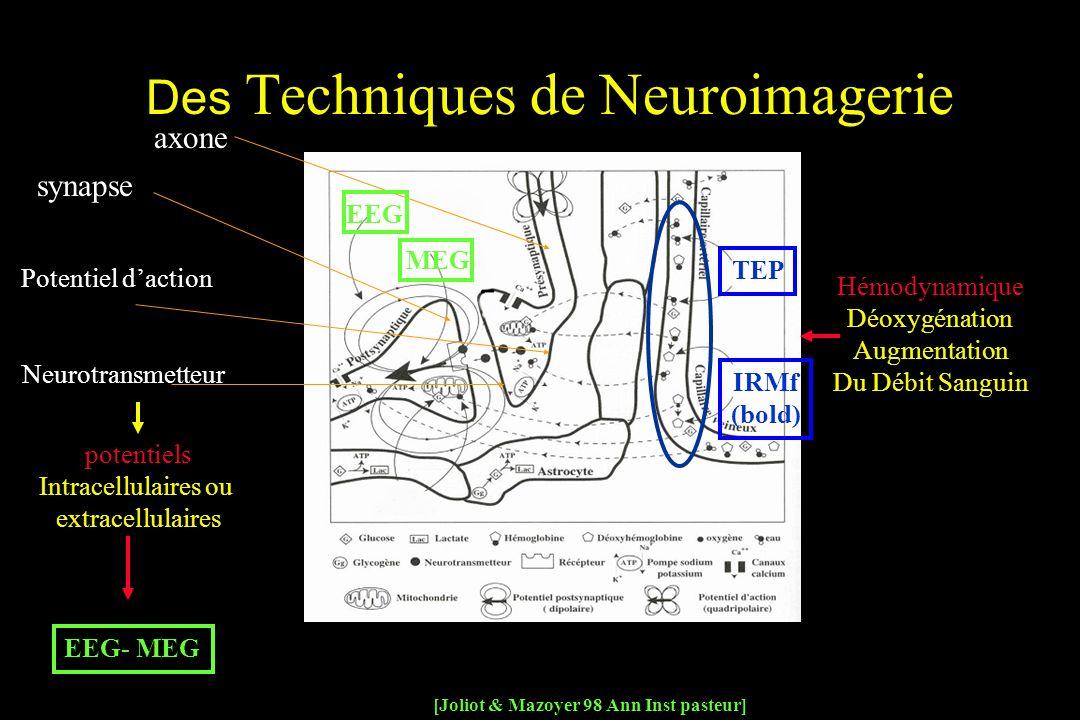 Des Techniques de Neuroimagerie
