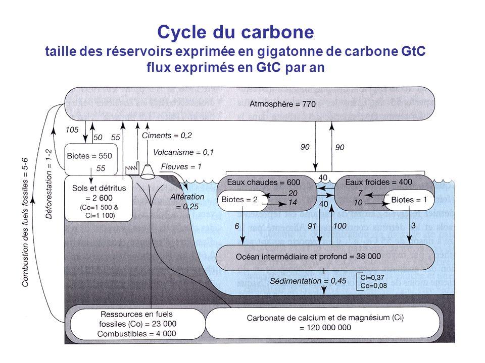 Cycle du carbone taille des réservoirs exprimée en gigatonne de carbone GtC flux exprimés en GtC par an