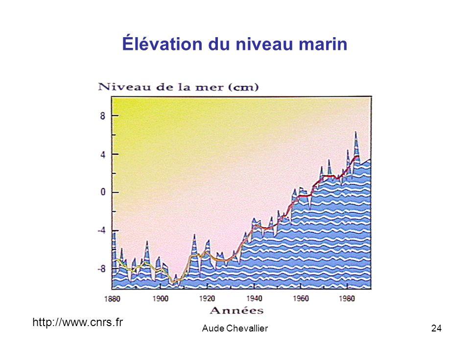 Élévation du niveau marin