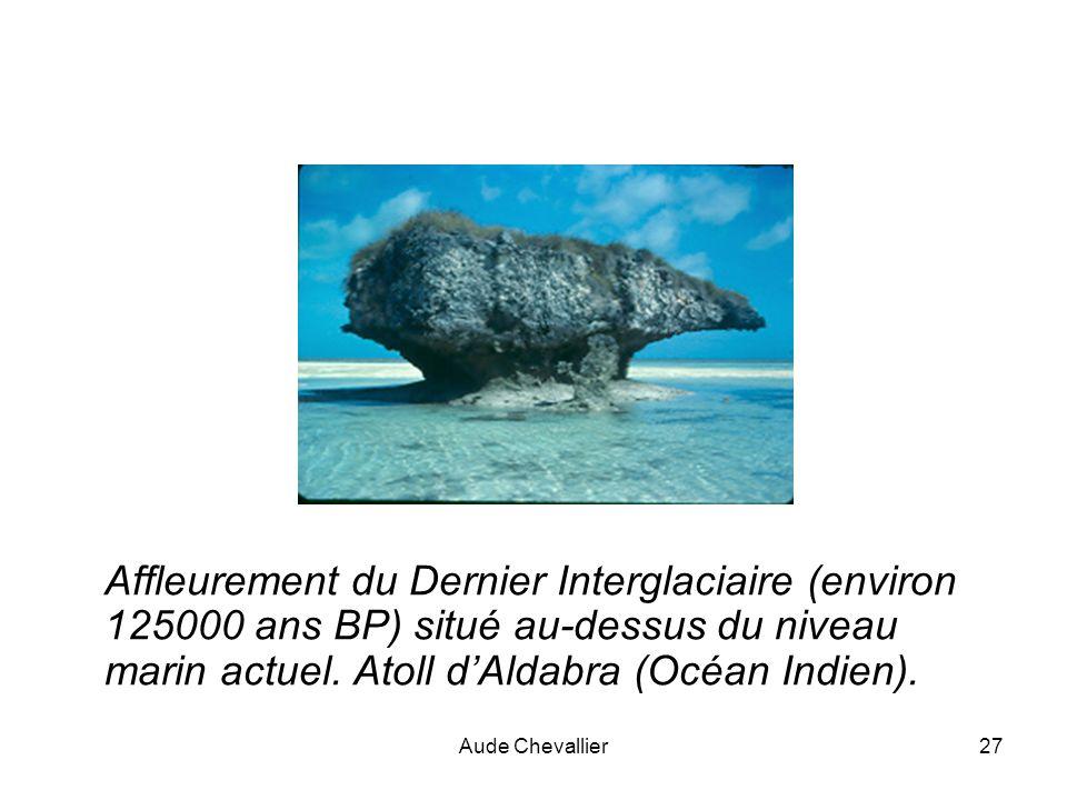 Affleurement du Dernier Interglaciaire (environ 125000 ans BP) situé au-dessus du niveau marin actuel. Atoll d'Aldabra (Océan Indien).