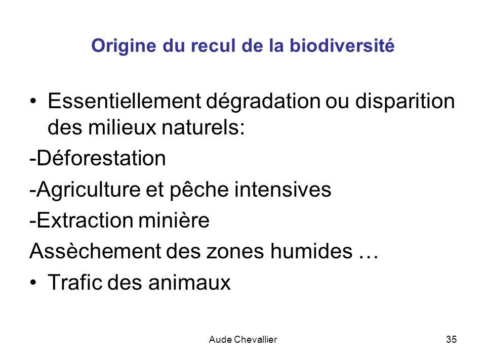 Origine du recul de la biodiversité