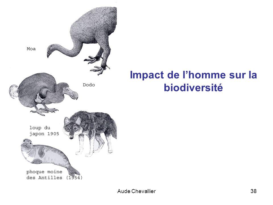 Impact de l'homme sur la biodiversité