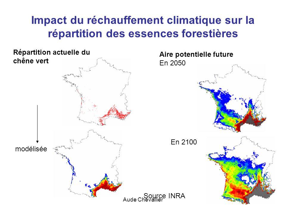 Impact du réchauffement climatique sur la répartition des essences forestières