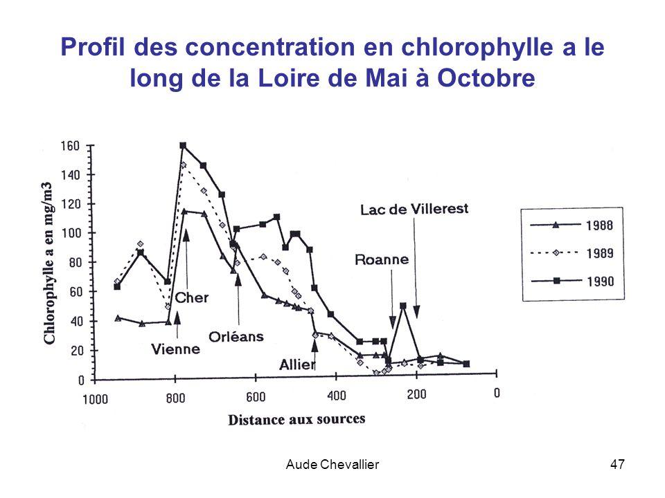 Profil des concentration en chlorophylle a le long de la Loire de Mai à Octobre