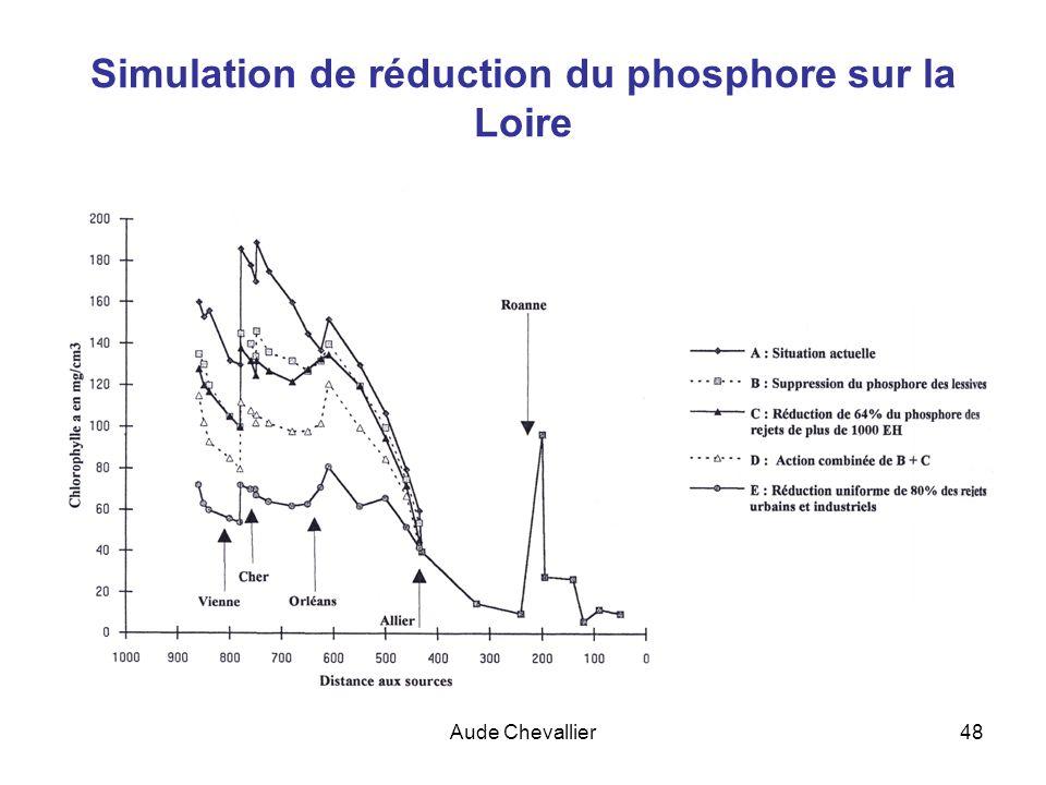 Simulation de réduction du phosphore sur la Loire