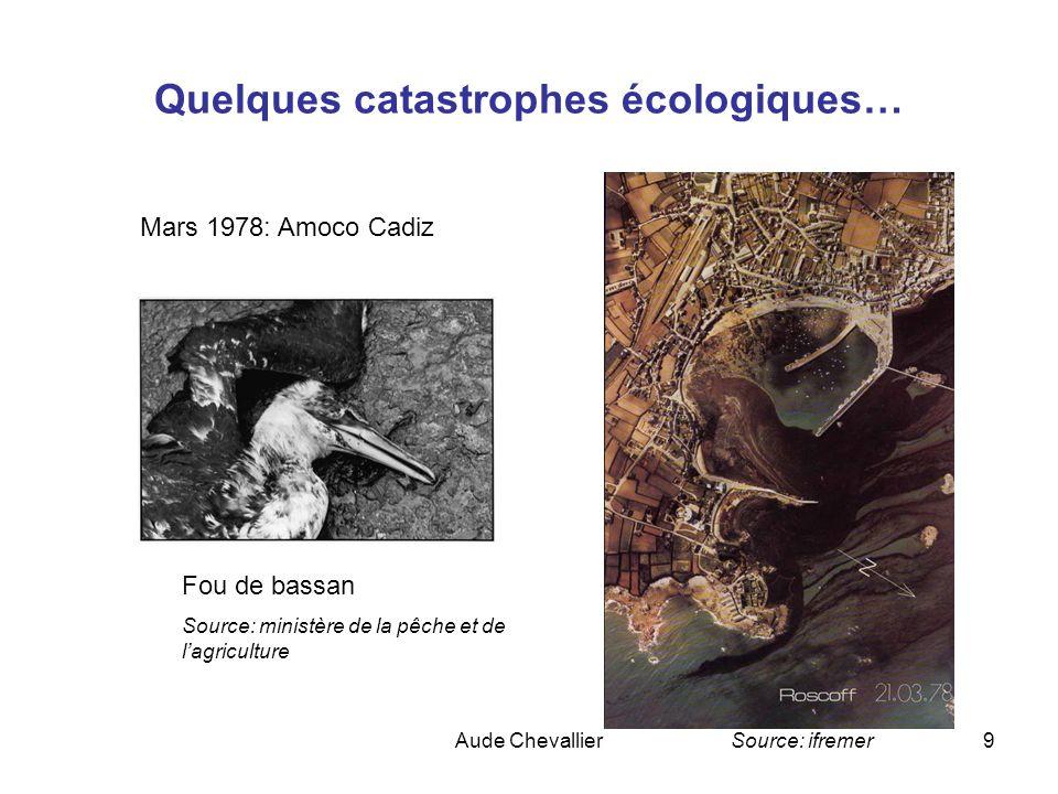 Quelques catastrophes écologiques…