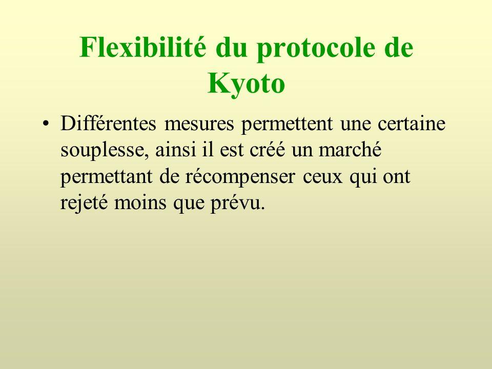 Flexibilité du protocole de Kyoto