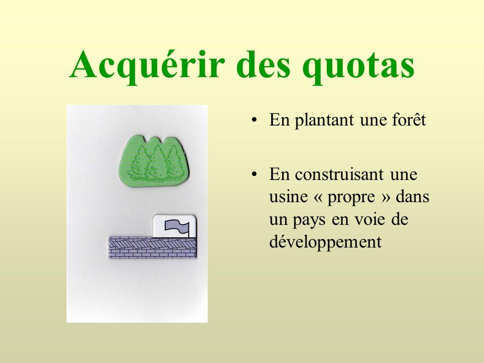 Acquérir des quotas En plantant une forêt