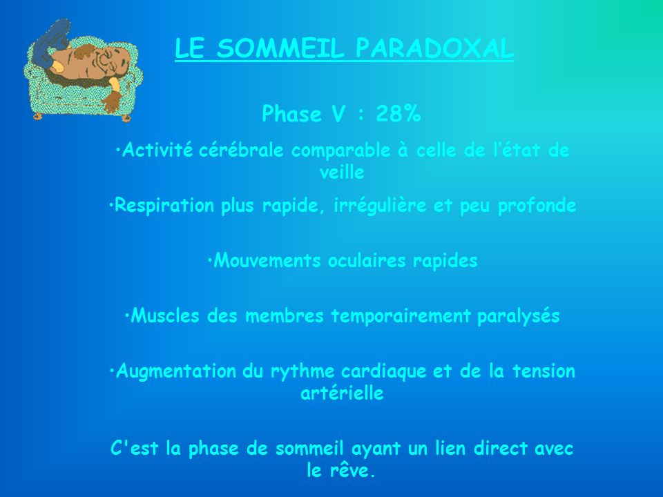 LE SOMMEIL PARADOXAL Phase V : 28%