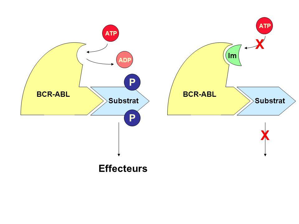 BCR-ABL ATP X Im Substrat Effecteurs ADP P