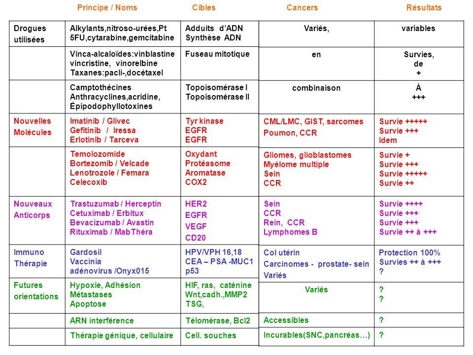 Principe / Noms Cibles Cancers Résultats