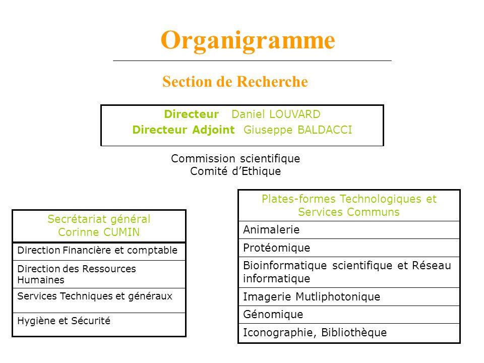 Organigramme Section de Recherche Directeur Daniel LOUVARD