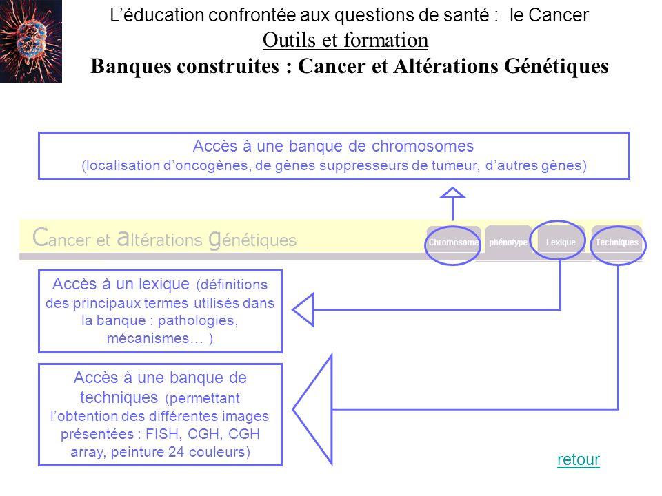 Banques construites : Cancer et Altérations Génétiques