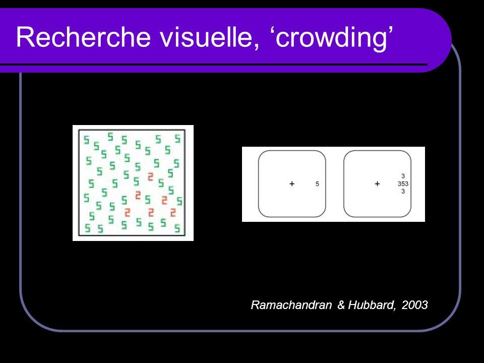 Recherche visuelle, 'crowding'