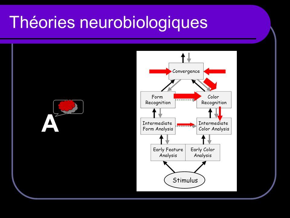 Théories neurobiologiques